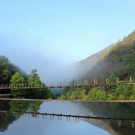 Ocoee Dam by Lorraine Baum
