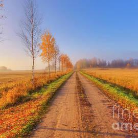 Veikko Suikkanen - October Countryside 4
