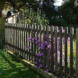 Felicia Tica - October Garden