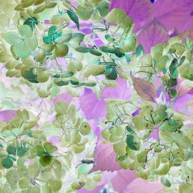 October Hydrangeas Pop Art by Dora Sofia Caputo Photographic Design and Fine Art
