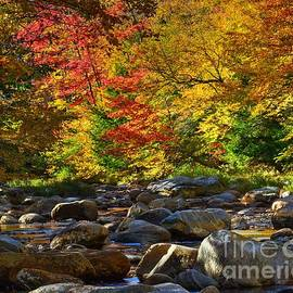Steve Brown - October in New Hampshire