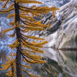 October in the Enchantments by Mike Reid