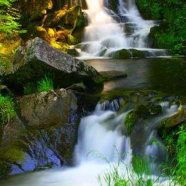 Daniel Coulter - Ogemaw Falls, Michigan