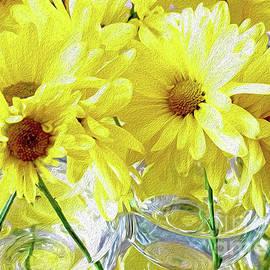 Oh, Daisy II by Jilian Cramb - AMothersFineArt