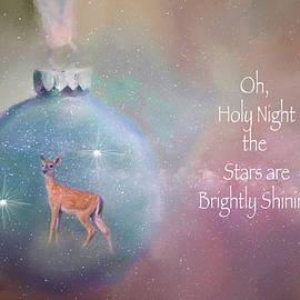 Lynn Bauer - Oh, Holy Night