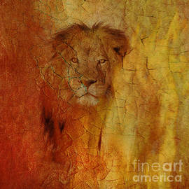 Oh, Lion of Judah by Beverly Guilliams