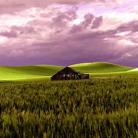 Old Barn in a Pa-louse wheat field  by Jeff Swan