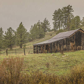 Old Barn in the Rain 2 by Teresa Wilson