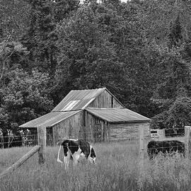 Todd Hostetter - Old Barn