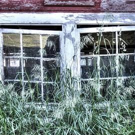Andrea Swiedler - Old Barn Windows 1