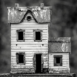 Old Bird House by Don Johnson