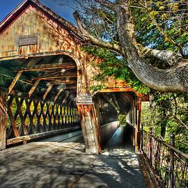 Michael Ciskowski - Old Bridge at Woodstock