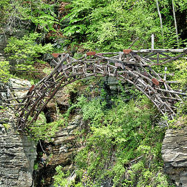 Cathy Kovarik - Old Bridge