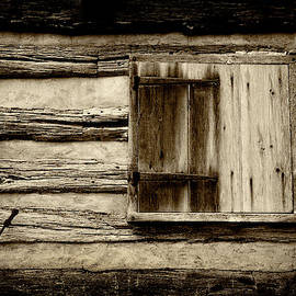 Old Cabin Window by Paul W Faust - Impressions of Light