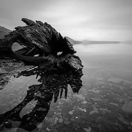 Michael Scott - Old Driftwood