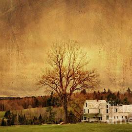 Alana Ranney - Old Farm House on a Hill
