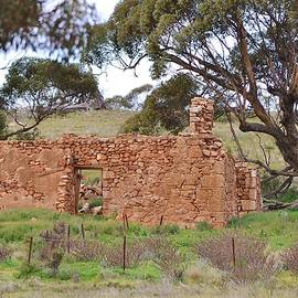 Denise Walding - Old farm house ruin