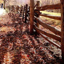 Arlane Crump - Old Fashioned Fence