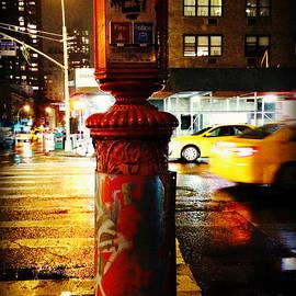 Miriam Danar - Old - Fashioned Fire Alarm Police Call Box - New York City