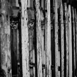 Miguel Winterpacht - Old Fence in the City