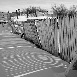 Old Fences by Dutch Bieber