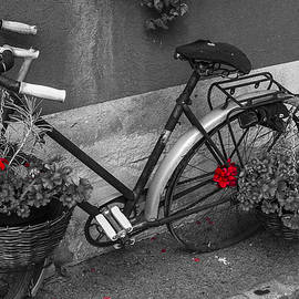 Old flowered bicycle by Paul MAURICE