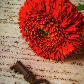 Old Key And Gerbera Daisy - Garry Gay