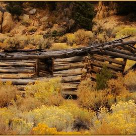 Old Log Cabin 3 by Sherri Meyer