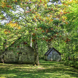 Lisa Bell - Old Log Cabin