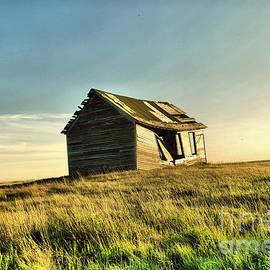 Old North Dakota Cabin  by Jeff Swan