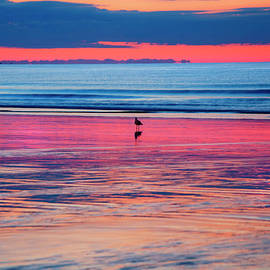 Joann Vitali - Old Orchard Beach Sunrise