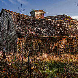 Marty Saccone - Old Rustic Barn