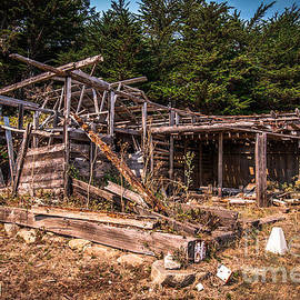 Old Shack In Cambria Pines by Blake Webster