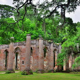 Lisa Wooten - Old Sheldon Church Ruins Beaufort SC 3
