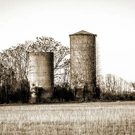 Old Silos by Barry Jones