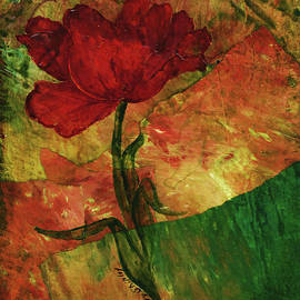 Old Time Tulip by Sherry Shipley