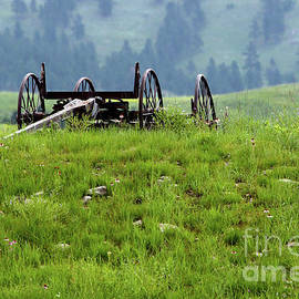 Old western wagon frame by Alan Look