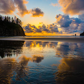 Mark Robert Rogers - Olympic Sunset Glow