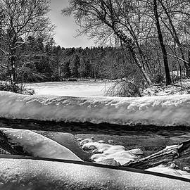 On Frozen Pond by John Haldane