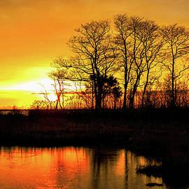 Bob Cuthbert - On Golden Pond
