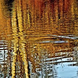 Carol F Austin - On Golden Pond