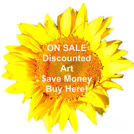ON SALE art group FOLLOW THIS IMAGE by Delynn Addams