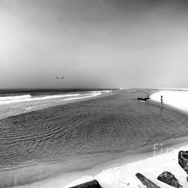 On The Beach At Long Beach Island by John Rizzuto