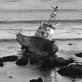 Suzanne Gaff - On the Rocks Black and White