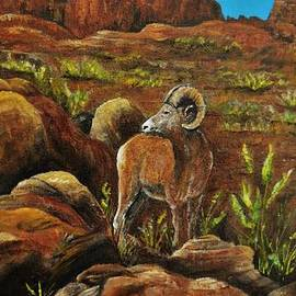 Vicki Caucutt - On The Rocks