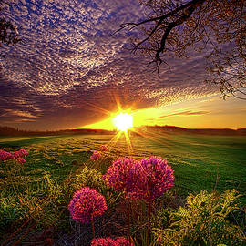 Phil Koch - Once Upon A Lifetime