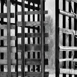 Lauren Leigh Hunter Fine Art Photography - Open Door Policy