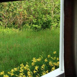 Open The Window To Spring by Georgia Sheron