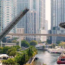 Opening Bridge - Miami by Arlane Crump