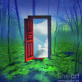 Rob Corsetti - Opening Doors